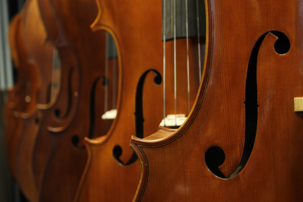 A row of 6 double basses in a line